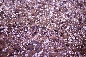 Cómo mezclar las sales de Epsom como fertilizante