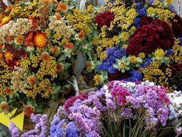 Cómo cuidar de las flores secas