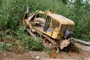 Cómo borrar Mesquite Con un bulldozer