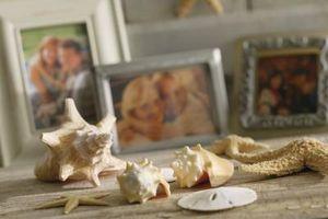 Cómo utilizar dólares de arena para hacer la decoración del hogar