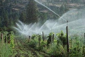 Presión del agua fluctúa de vez en cuando