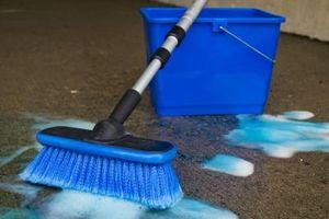 Cómo limpiar después de la infestación de moho