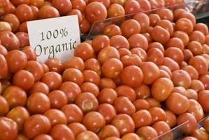 Caseras plaguicidas no tóxicos para las plantas de tomate