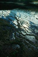Métodos locales de control de la erosión en cárcavas