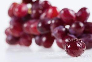 Los mejores lugares para hacer crecer la llama uvas sin semillas