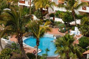 Las plantas tropicales para un Área de piscina