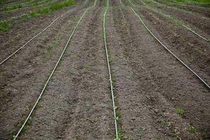 Los componentes del suelo: Materia Orgánica
