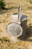 Los recipientes de metal para plantas
