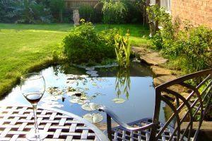 Instrucciones de estanque de jardín