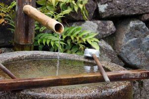 Características del Agua interiores japoneses