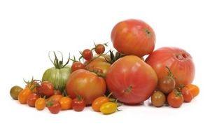 Cómo conservar los tomates frescos