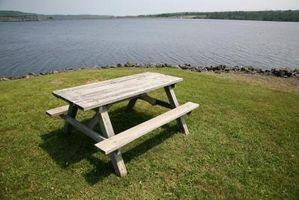 ¿Cuál es mejor para una mesa de picnic: cedro rojo o Redwood?