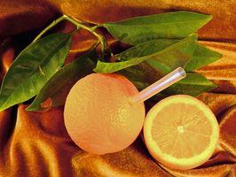 ¿Dónde están las naranjas encontrados en Florida?
