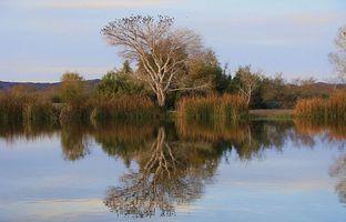 Características del Agua para la Agricultura