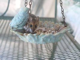 Cómo deshacerse de los ratones con eficacia