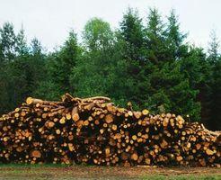 Tipos de madera al aire libre Calentadores