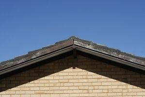 Musgo daños a un tejado