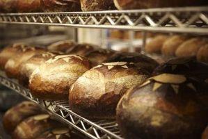 ¿Qué tipos de bacterias crecen en el pan?
