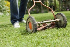 ¿Es malo para dejar una capa pesada de hierba después de cortar?