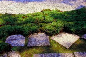 Como el nivel del suelo para una versión Patio de piedra