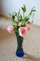 Cómo conservar flores con Clorox