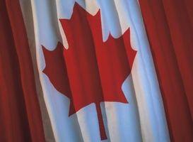 Cómo eliminar Asarum Canadense