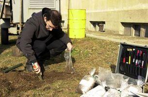 Como prueba de los niveles de nitrógeno en el suelo