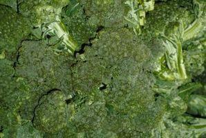 Planta de brócoli Spindly