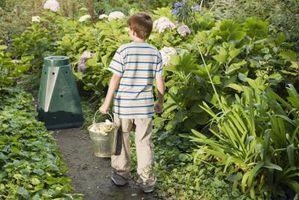 Planes vaso de compost caseros