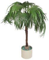 Cómo cuidar de cubierta de las palmeras y plantas de interior