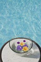 Cómo mostrar las flores en agua