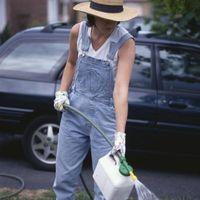 ¿Cómo deshacerse de los ácaros de araña en plantas de malezas con pesticidas