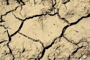 Los niveles de pH del suelo de arcilla