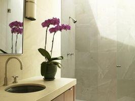 Consejos sobre el Crecimiento plantas de orquídeas en una casa
