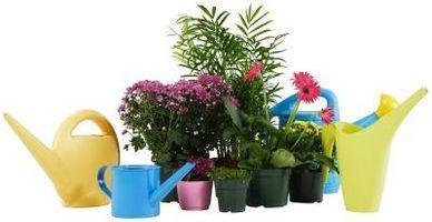 Tierra para macetas para plantas de ácido-Loving
