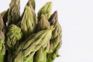 ¿Cómo hacer crecer orgánicamente del espárrago
