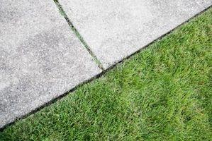 Cómo limpiar hormigón Con los productos para el hogar
