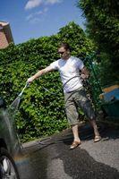 ¿Cómo hacer crecer arbustos con agua dura