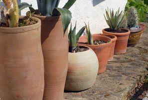 Los materiales que se pueden utilizar para el drenaje de las plantas en macetas