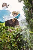 El agua alcalina para las plantas