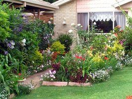 Cómo plantar un jardín Cottage en Tasmania