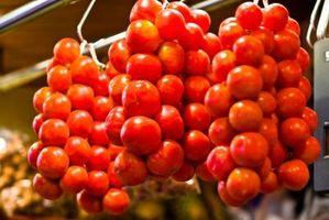 El mejor método para replantear tomates