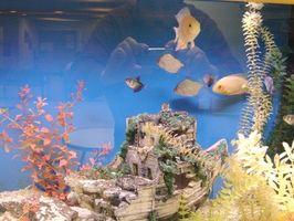 Cómo hacer una luz bajo el agua para su tanque de peces