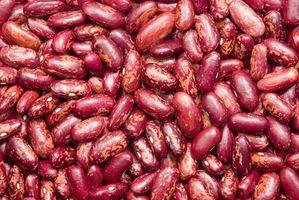 Cómo germinar semillas de frijol rojo