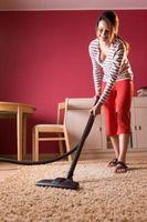 Cómo limpiar una alfombra con el Flea Killer