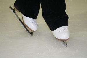Ideas para el patio trasero Pistas de hielo