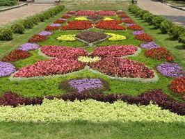 Herramientas en línea de planificación de jardín