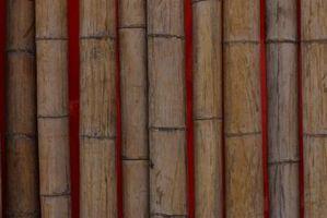 Cómo fortalecer bambú