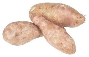 Fertilizante orgánico para crecer de la patata dulce
