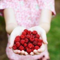 ¿Cómo recortar arbustos frambuesa roja